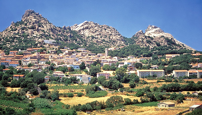 During your family holiday in Sardinia how can you not go on a half day trip to the inland regions?